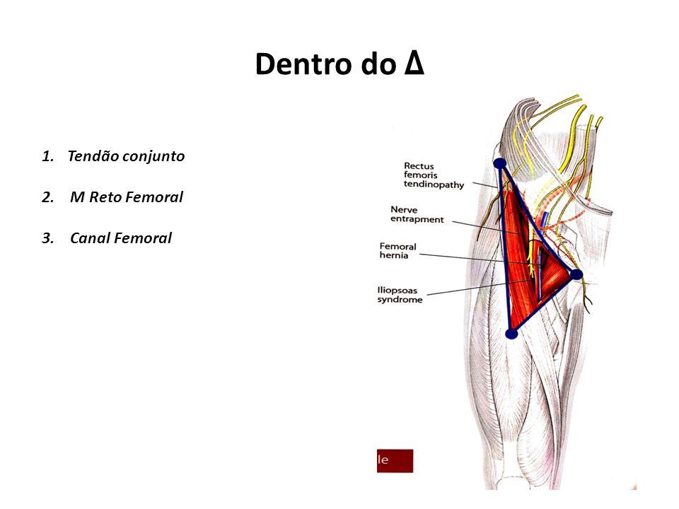 Dentro do Δ 1.Tendão conjunto 2. M Reto Femoral 3. Canal Femoral