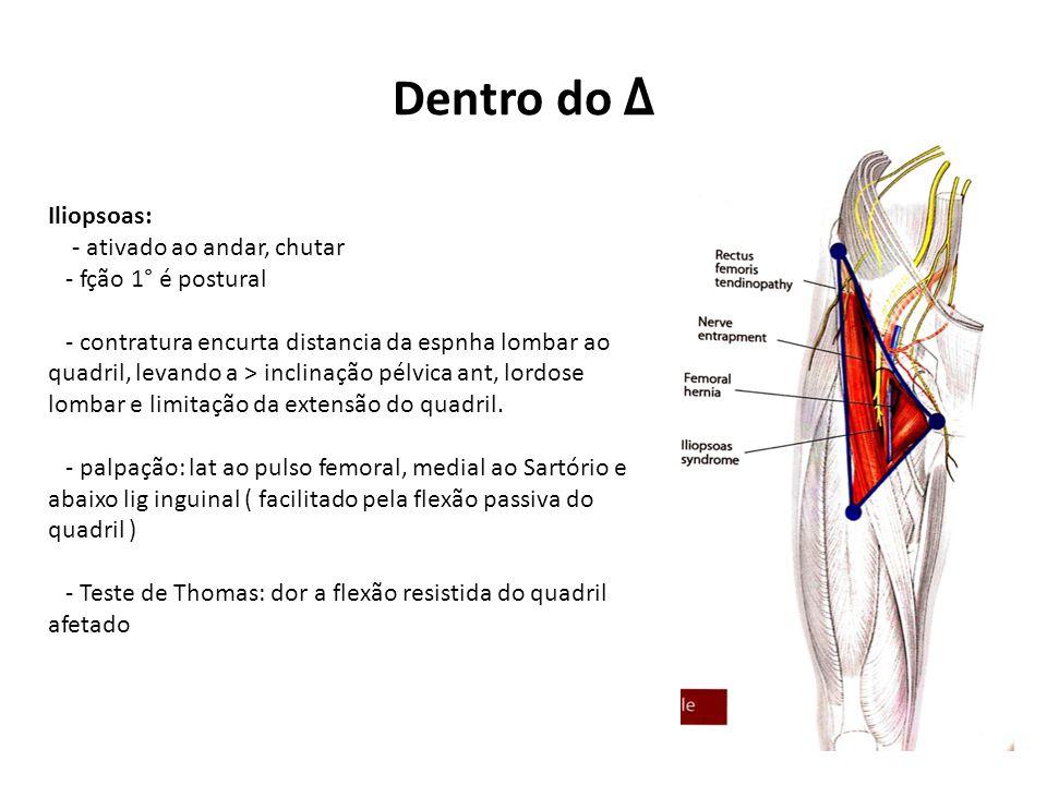 Dentro do Δ Iliopsoas: - ativado ao andar, chutar - fção 1° é postural - contratura encurta distancia da espnha lombar ao quadril, levando a > inclinação pélvica ant, lordose lombar e limitação da extensão do quadril.