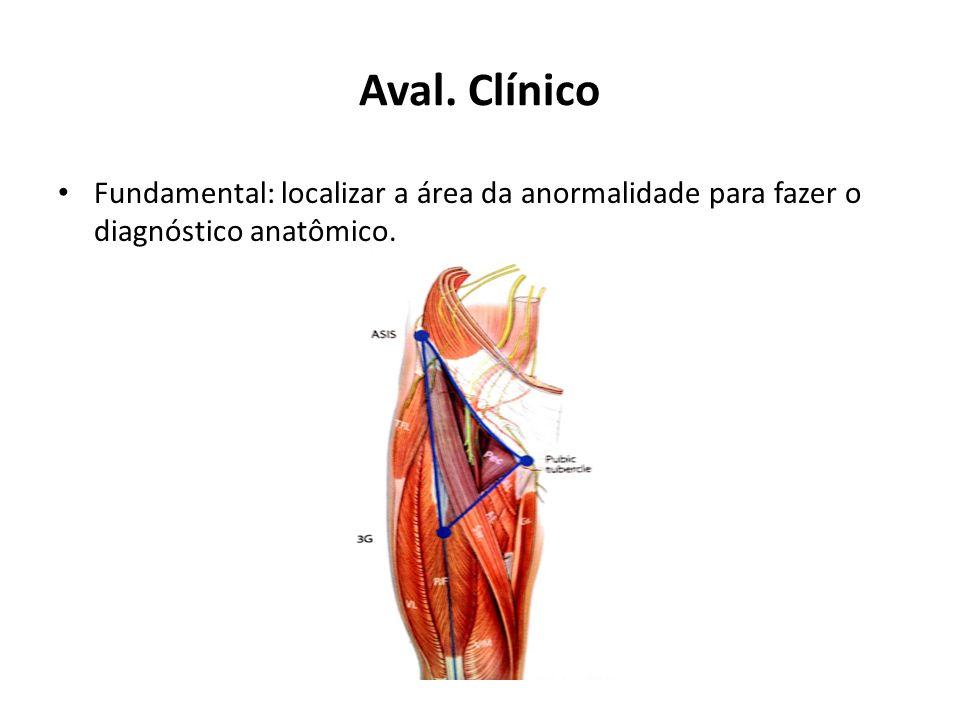 Aval. Clínico Fundamental: localizar a área da anormalidade para fazer o diagnóstico anatômico.