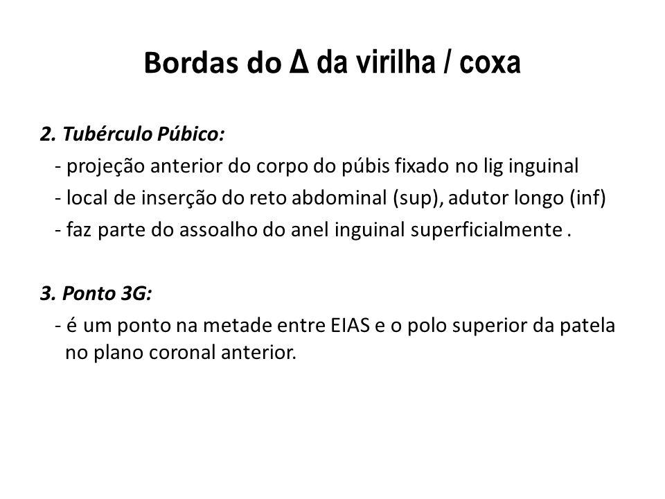 Bordas do Δ da virilha / coxa 2.
