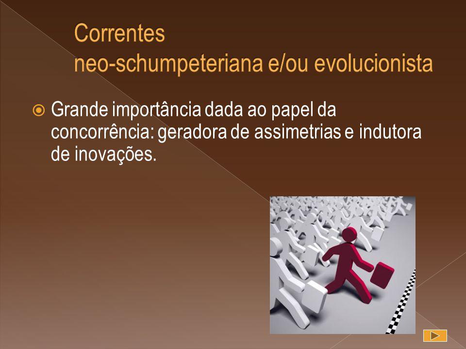  Grande importância dada ao papel da concorrência: geradora de assimetrias e indutora de inovações.
