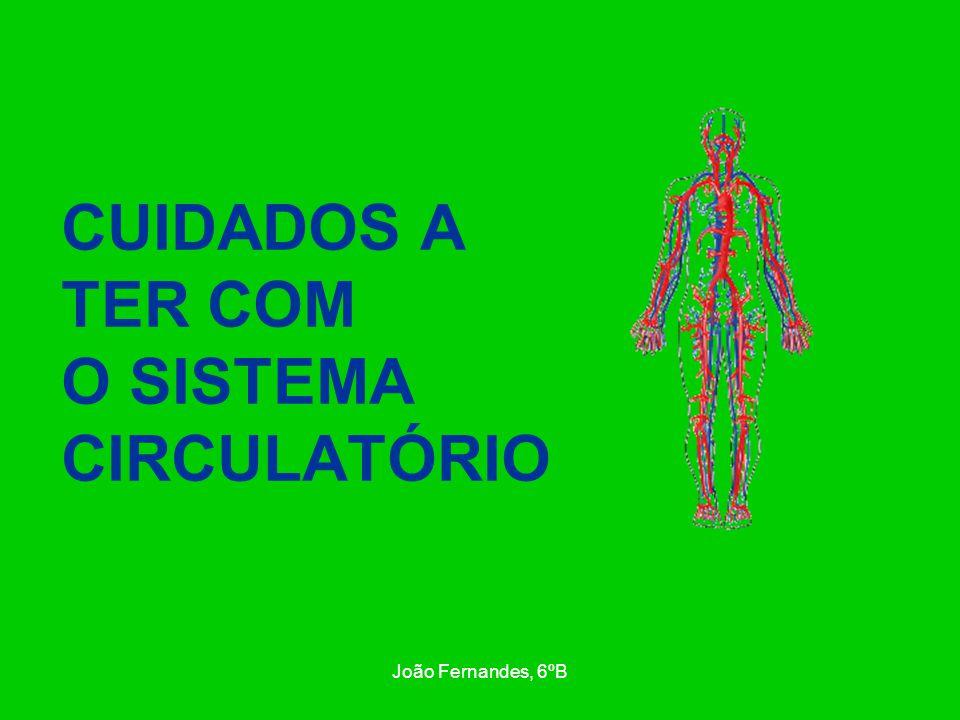 João Fernandes, 6ºB 1º cuidado – Devemos praticar exercício físico, de forma moderada, fortifica o coração e evita a perda de elasticidade das artérias, o que facilita a circulação do sangue.