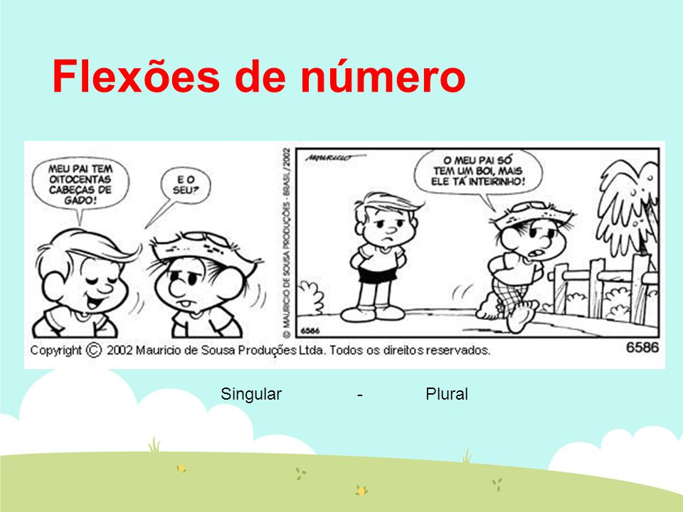 Flexões de número Singular-Plural