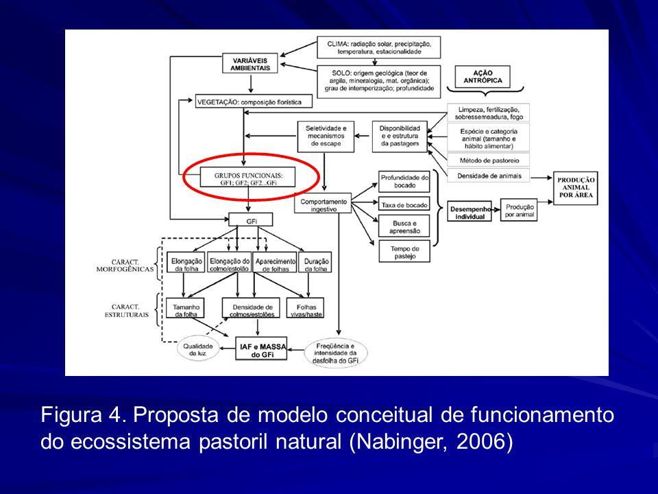 Figura 4. Proposta de modelo conceitual de funcionamento do ecossistema pastoril natural (Nabinger, 2006)