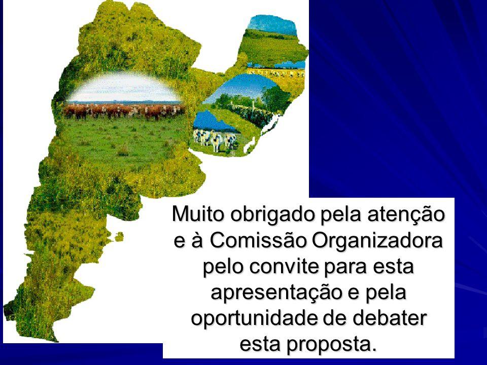 Muito obrigado pela atenção e à Comissão Organizadora pelo convite para esta apresentação e pela oportunidade de debater esta proposta.