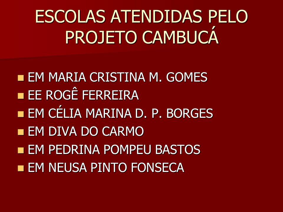 ESCOLAS ATENDIDAS PELO PROJETO CAMBUCÁ EM MARIA CRISTINA M. GOMES EM MARIA CRISTINA M. GOMES EE ROGÊ FERREIRA EE ROGÊ FERREIRA EM CÉLIA MARINA D. P. B