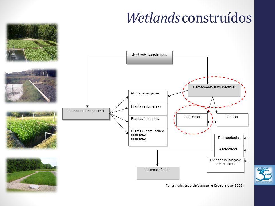 Wetlands construídos Fonte: Adaptado de Vymazal e Kroepfelová (2008) Plantas flutuantes Escoamento subsuperficial Wetlands construídos Escoamento supe