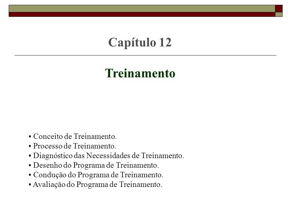 Capítulo 12 Treinamento Conceito de Treinamento. Processo de Treinamento. Diagnóstico das Necessidades de Treinamento. Desenho do Programa de Treiname