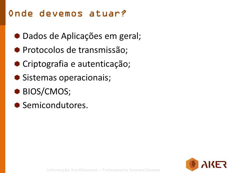 Dados de Aplicações em geral; Protocolos de transmissão; Criptografia e autenticação; Sistemas operacionais; BIOS/CMOS; Semicondutores. Onde devemos a