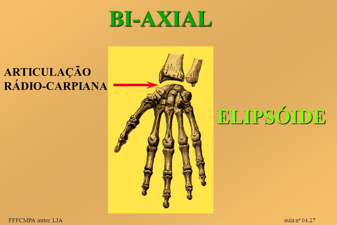 FFFCMPA autor LJA aula nº 04.27 BI-AXIAL ELIPSÓIDE ARTICULAÇÃO RÁDIO-CARPIANA