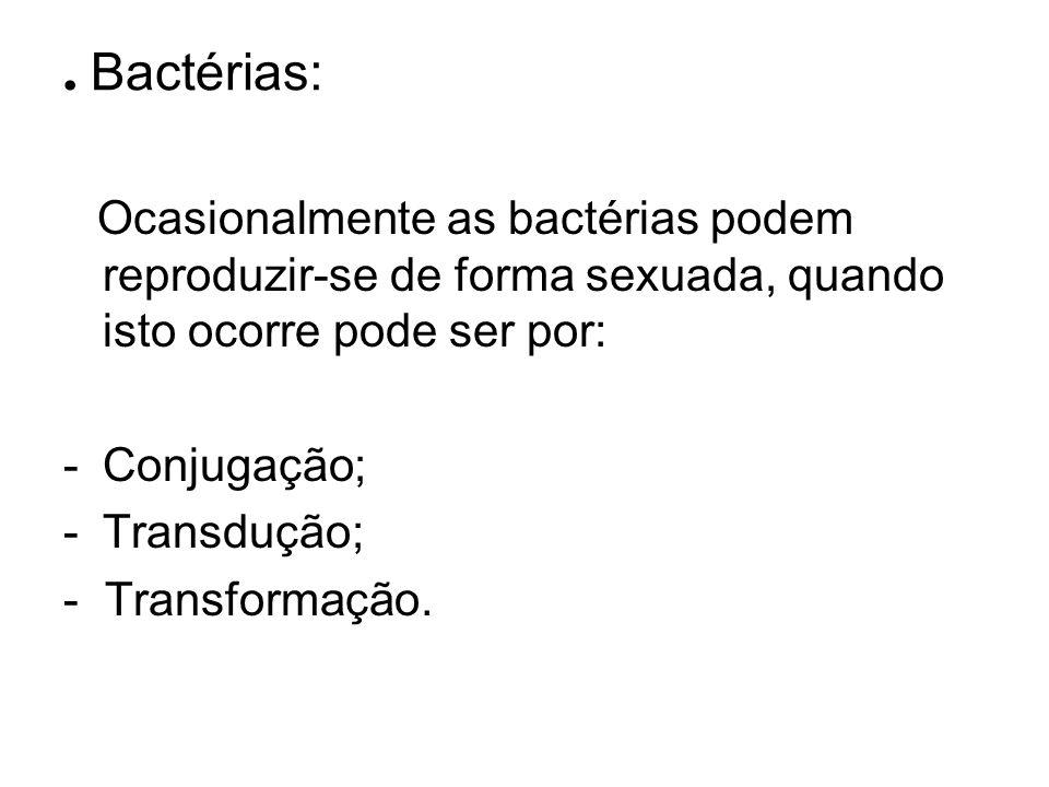 . Bactérias: Ocasionalmente as bactérias podem reproduzir-se de forma sexuada, quando isto ocorre pode ser por: -Conjugação; -Transdução; - Transforma