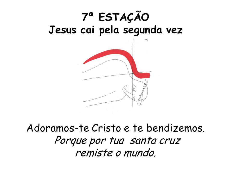 7ª ESTAÇÃO Jesus cai pela segunda vez Adoramos-te Cristo e te bendizemos. Porque por tua santa cruz remiste o mundo.