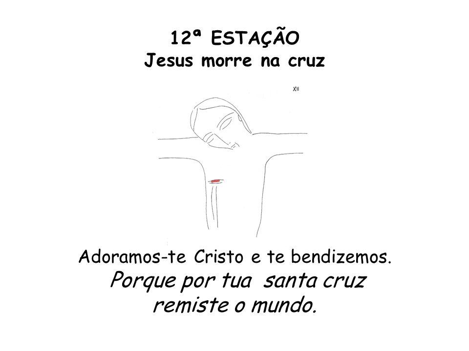 12ª ESTAÇÃO Jesus morre na cruz Adoramos-te Cristo e te bendizemos. Porque por tua santa cruz remiste o mundo.