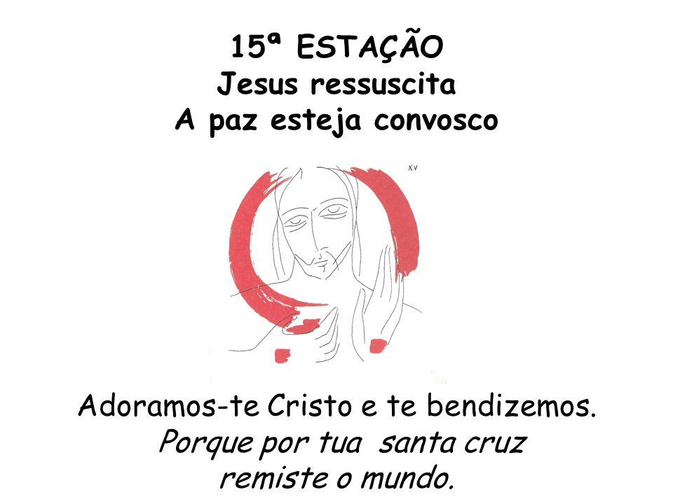 15ª ESTAÇÃO Jesus ressuscita A paz esteja convosco Adoramos-te Cristo e te bendizemos. Porque por tua santa cruz remiste o mundo.