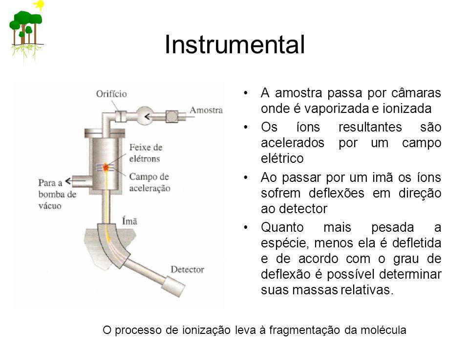 Instrumental A amostra passa por câmaras onde é vaporizada e ionizada Os íons resultantes são acelerados por um campo elétrico Ao passar por um imã os