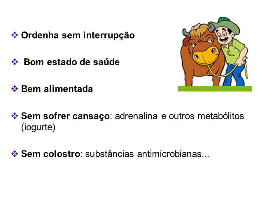  Ordenha sem interrupção  Bom estado de saúde  Bem alimentada  Sem sofrer cansaço: adrenalina e outros metabólitos (iogurte)  Sem colostro: subst