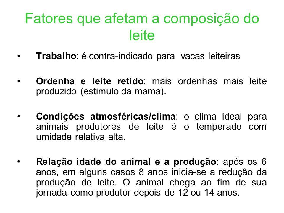 Fatores que afetam a composição do leite Trabalho: é contra-indicado para vacas leiteiras Ordenha e leite retido: mais ordenhas mais leite produzido (