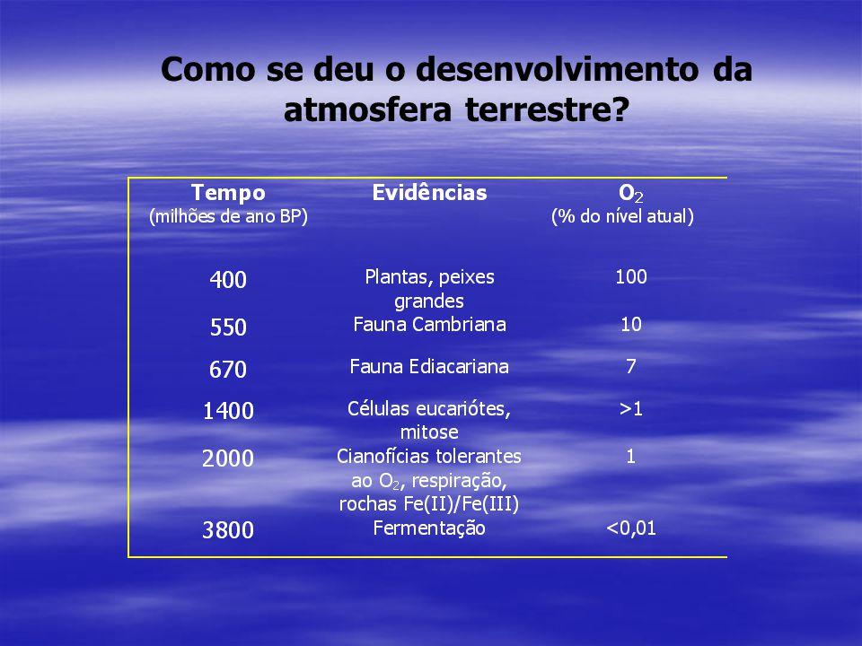 Como se deu o desenvolvimento da atmosfera terrestre?
