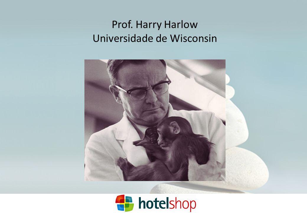 Prof. Harry Harlow Universidade de Wisconsin