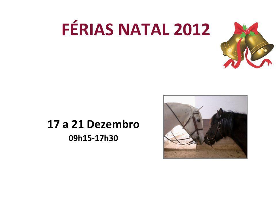 FÉRIAS NATAL 2012 17 a 21 Dezembro 09h15-17h30