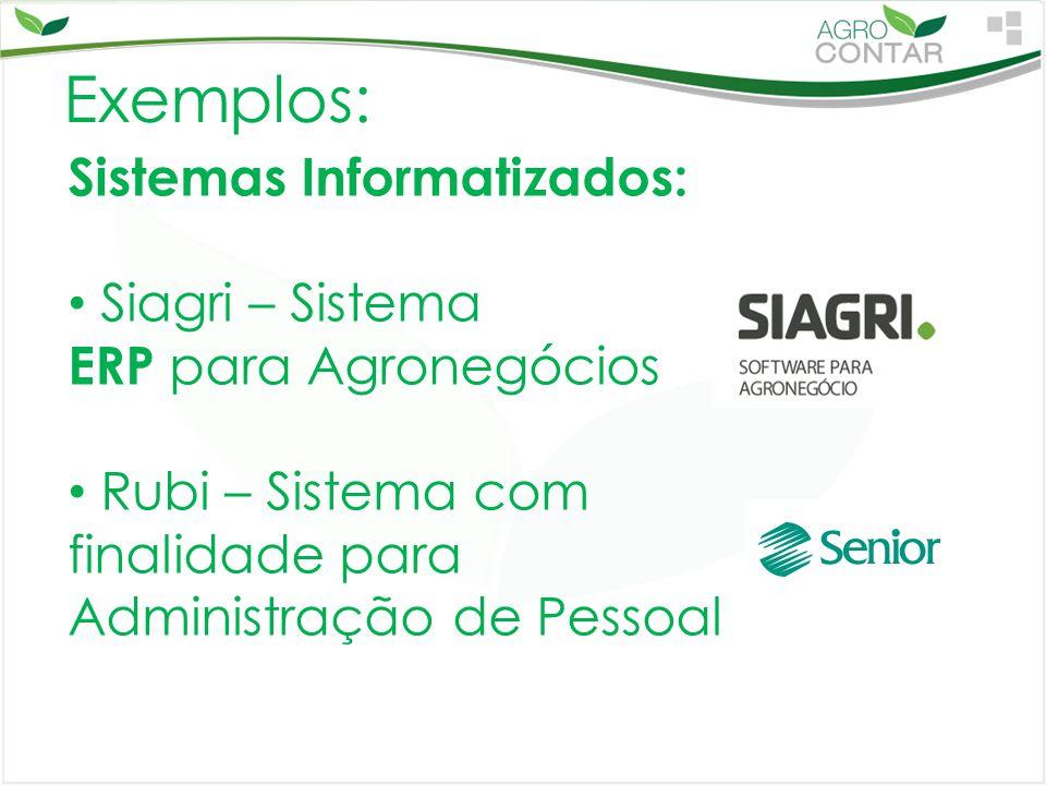 Exemplos: Sistemas Informatizados: Siagri – Sistema ERP para Agronegócios Rubi – Sistema com finalidade para Administração de Pessoal