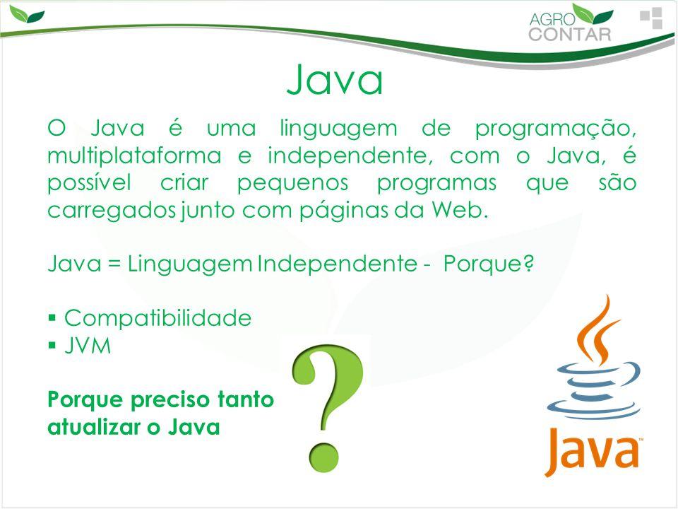 Java O Java é uma linguagem de programação, multiplataforma e independente, com o Java, é possível criar pequenos programas que são carregados junto c