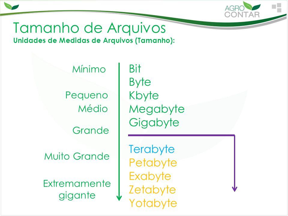 Tamanho de Arquivos Unidades de Medidas de Arquivos (Tamanho): Bit Byte Kbyte Megabyte Gigabyte Terabyte Petabyte Exabyte Zetabyte Yotabyte Mínimo Ext