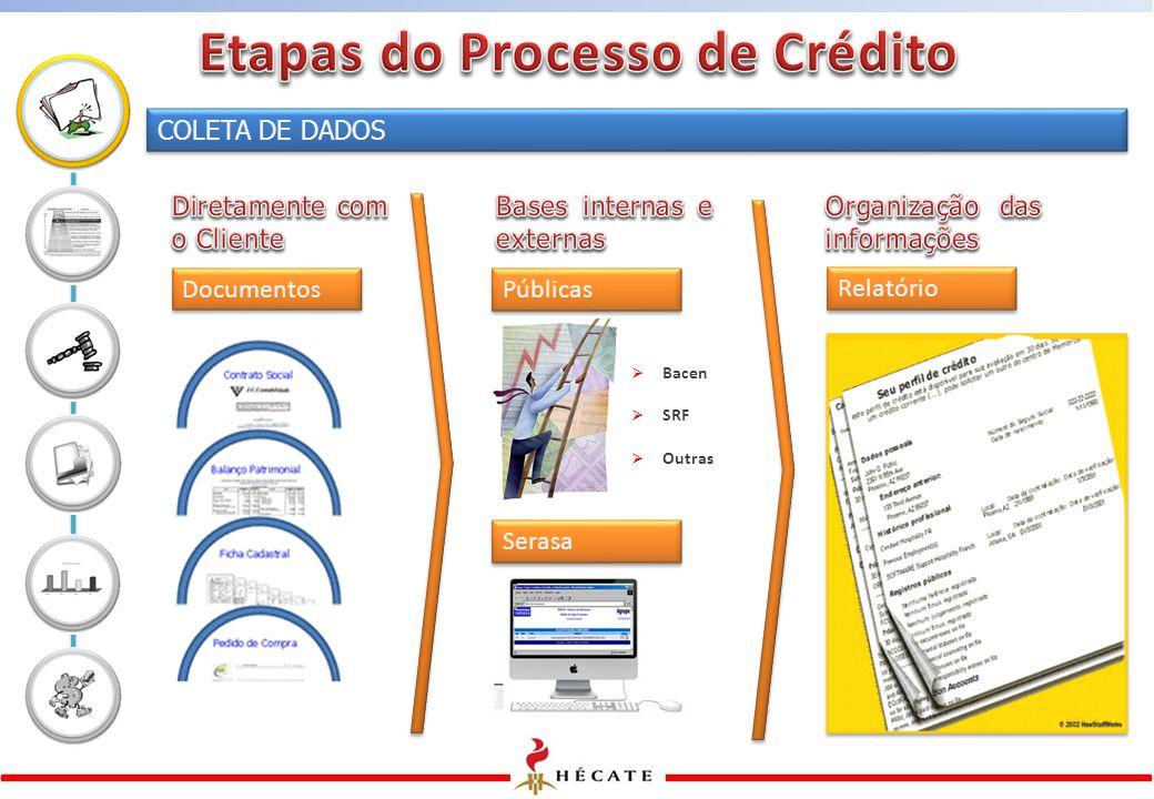 COLETA DE DADOS Documentos Públicas Serasa  Bacen  SRF  Outras Relatório