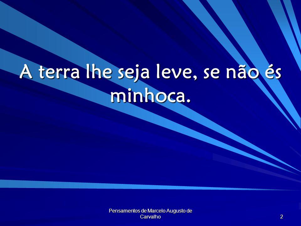 Pensamentos de Marcelo Augusto de Carvalho 3 Um homem que faz a diferença não é semelhante a ninguém.