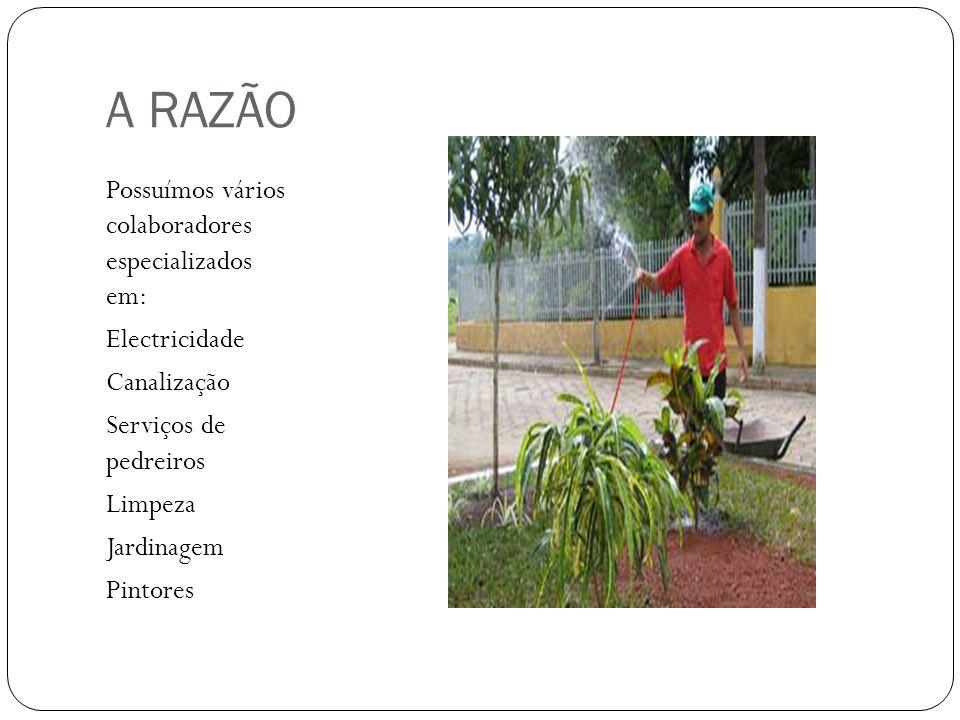 A RAZÃO Possuímos vários colaboradores especializados em: Electricidade Canalização Serviços de pedreiros Limpeza Jardinagem Pintores