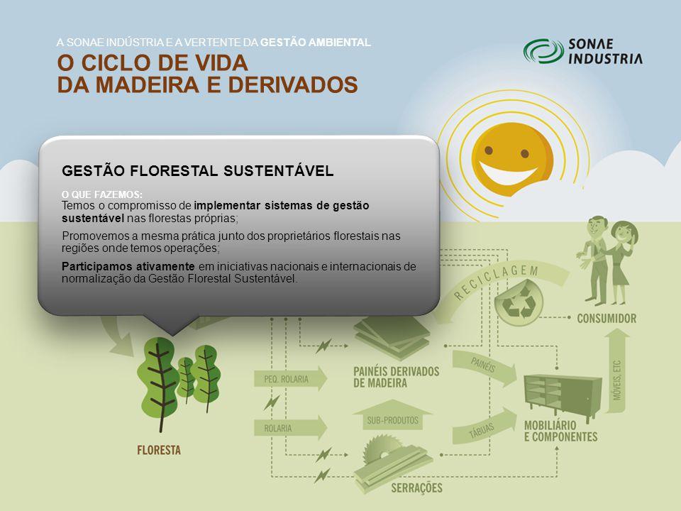 GESTÃO FLORESTAL SUSTENTÁVEL O QUE FAZEMOS: Temos o compromisso de implementar sistemas de gestão sustentável nas florestas próprias; Promovemos a mes