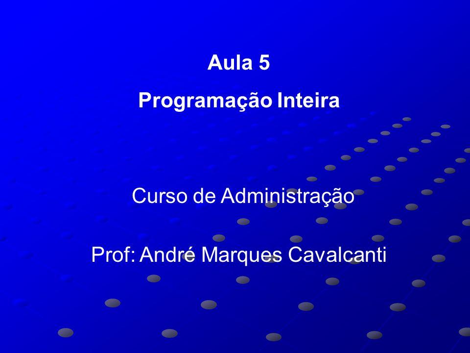 Aula 5 Programação Inteira Curso de Administração Prof: André Marques Cavalcanti