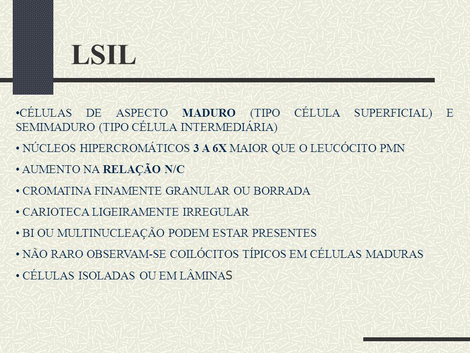 LSIL CÉLULAS DE ASPECTO MADURO (TIPO CÉLULA SUPERFICIAL) E SEMIMADURO (TIPO CÉLULA INTERMEDIÁRIA) NÚCLEOS HIPERCROMÁTICOS 3 A 6X MAIOR QUE O LEUCÓCITO