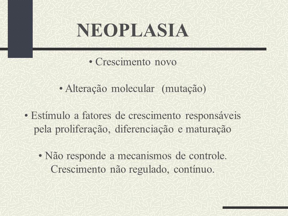 NEOPLASIA Crescimento novo Alteração molecular (mutação) Estímulo a fatores de crescimento responsáveis pela proliferação, diferenciação e maturação N