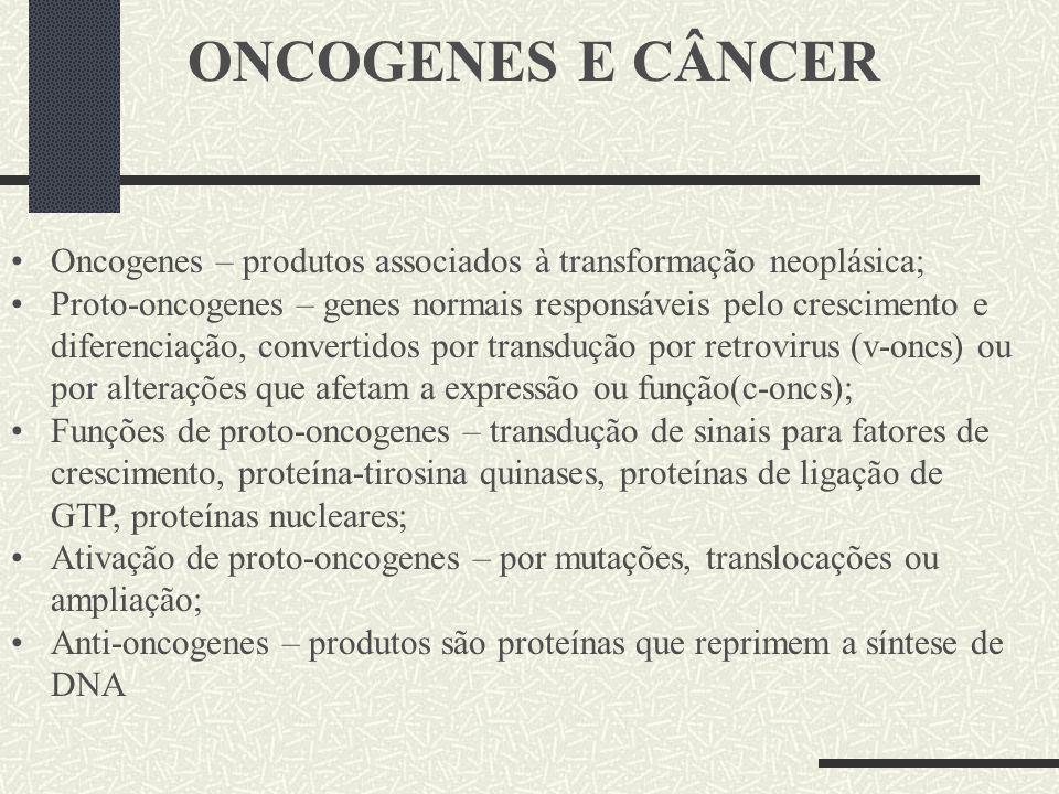 ONCOGENES E CÂNCER Oncogenes – produtos associados à transformação neoplásica; Proto-oncogenes – genes normais responsáveis pelo crescimento e diferen