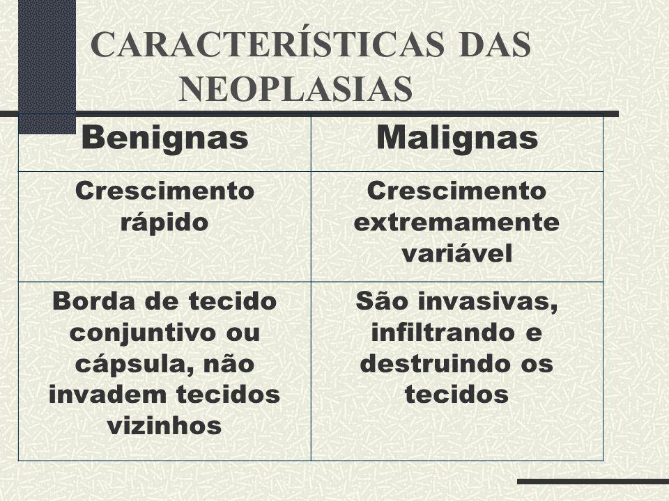 CARACTERÍSTICAS DAS NEOPLASIAS BenignasMalignas Crescimento rápido Crescimento extremamente variável Borda de tecido conjuntivo ou cápsula, não invade