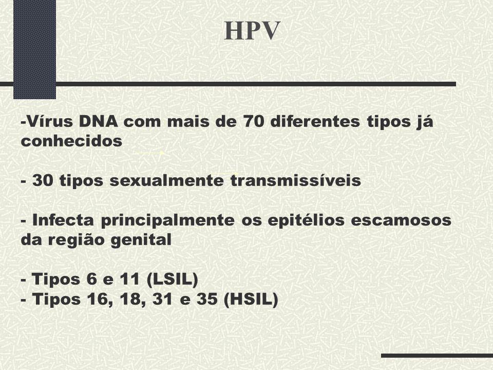 HPV -Vírus DNA com mais de 70 diferentes tipos já conhecidos - 30 tipos sexualmente transmissíveis - Infecta principalmente os epitélios escamosos da