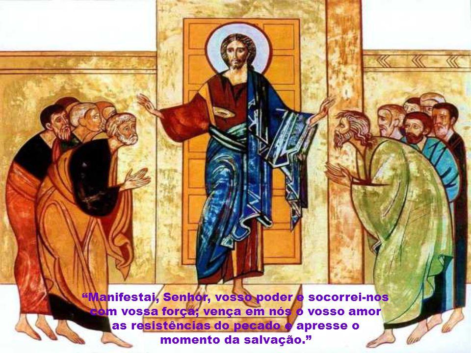 """""""Preparai o caminho do Senhor, endireitai suas veredas! Toda a carne há de ver a salvação do nosso Deus."""""""