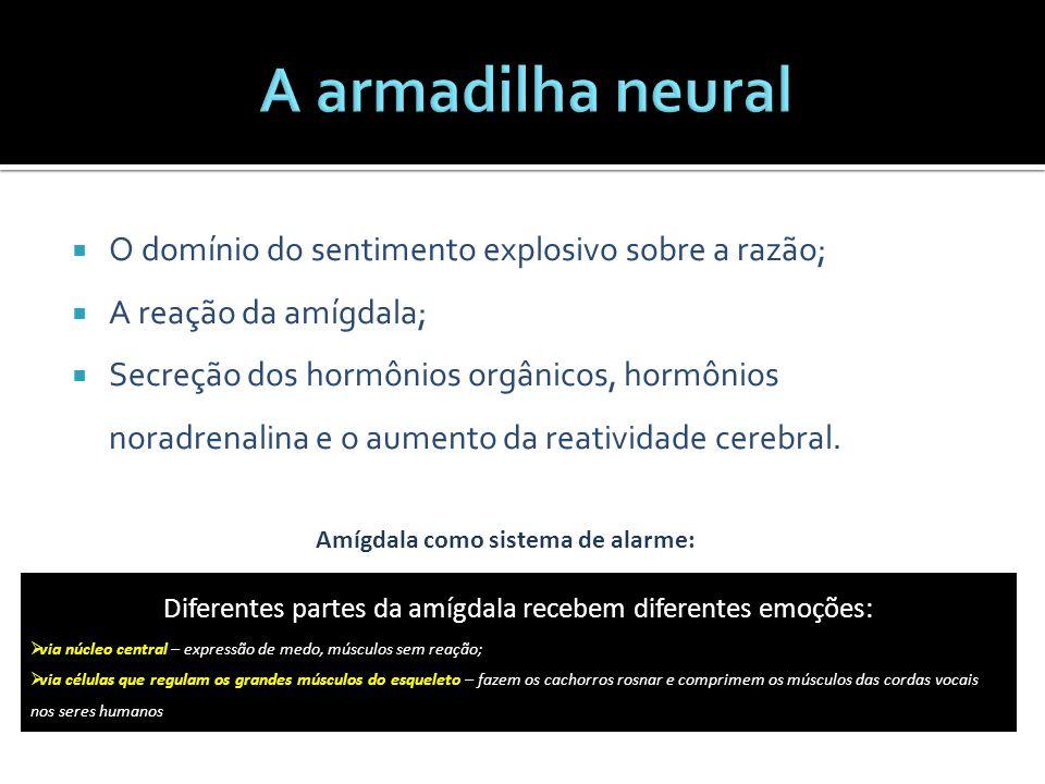  O domínio do sentimento explosivo sobre a razão;  A reação da amígdala;  Secreção dos hormônios orgânicos, hormônios noradrenalina e o aumento da