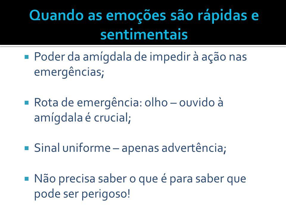  Poder da amígdala de impedir à ação nas emergências;  Rota de emergência: olho – ouvido à amígdala é crucial;  Sinal uniforme – apenas advertência
