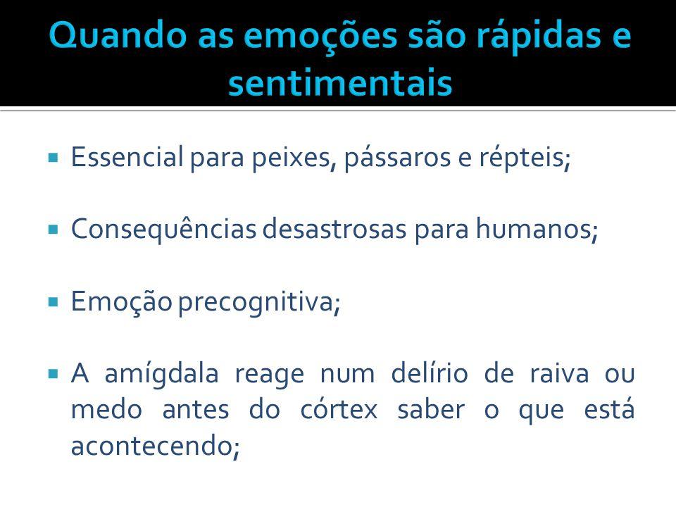  Essencial para peixes, pássaros e répteis;  Consequências desastrosas para humanos;  Emoção precognitiva;  A amígdala reage num delírio de raiva