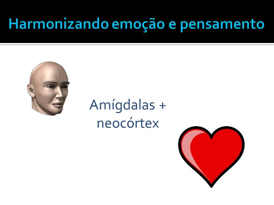 Amígdalas + neocórtex