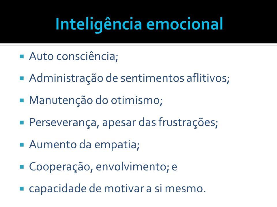 Auto consciência;  Administração de sentimentos aflitivos;  Manutenção do otimismo;  Perseverança, apesar das frustrações;  Aumento da empatia;