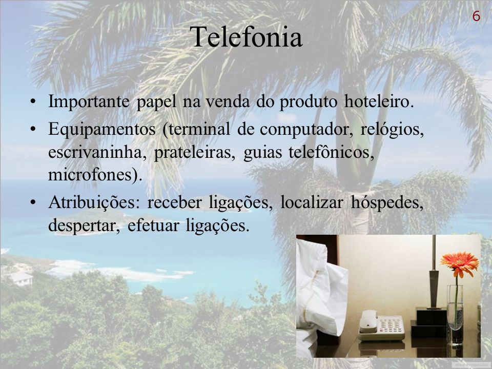 Telefonia Importante papel na venda do produto hoteleiro. Equipamentos (terminal de computador, relógios, escrivaninha, prateleiras, guias telefônicos