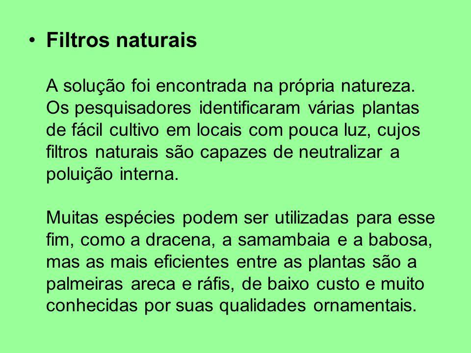 Filtros naturais A solução foi encontrada na própria natureza.