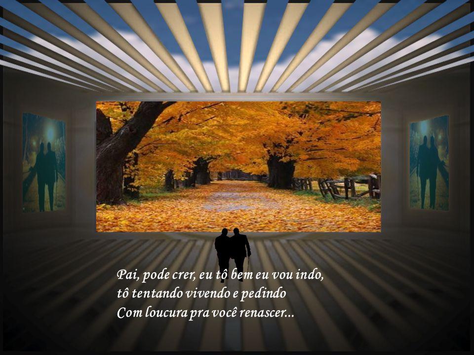 Pai, pode ser que daí você sinta, qualquer coisa entre esses vinte ou trinta Longos anos em busca de paz....