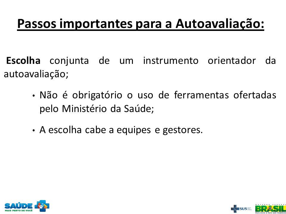 Escolha conjunta de um instrumento orientador da autoavaliação; Não é obrigatório o uso de ferramentas ofertadas pelo Ministério da Saúde; A escolha c