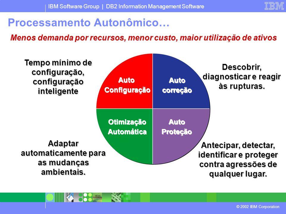 IBM Software Group | DB2 Information Management Software © 2002 IBM Corporation Auto Configuração Auto Configuração Otimização Automática Otimização Automática Auto Proteção Auto Proteção Auto correção Auto correção Tempo mínimo de configuração, configuração inteligente Antecipar, detectar, identificar e proteger contra agressões de qualquer lugar.