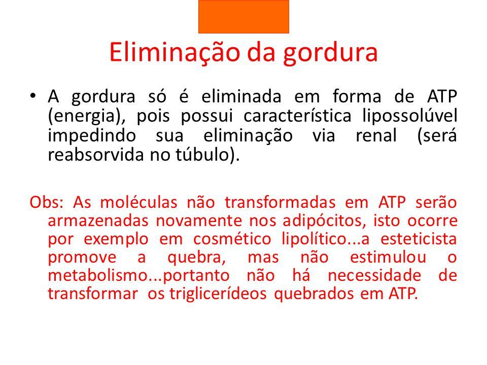 A gordura só é eliminada em forma de ATP (energia), pois possui característica lipossolúvel impedindo sua eliminação via renal (será reabsorvida no tú