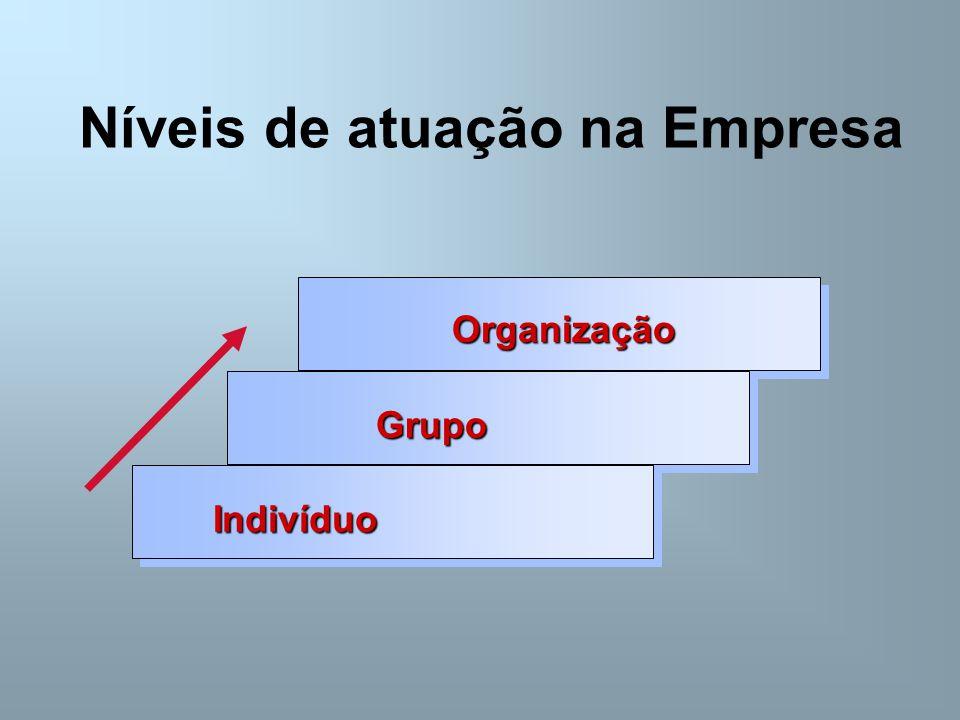 Níveis de atuação na Empresa Organização Grupo Indivíduo
